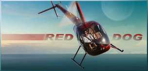 Red Dog Helicopters BAPS Children's Charity